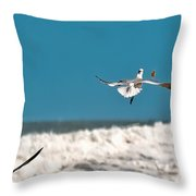 Cracker Tracker Throw Pillow