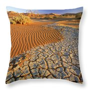 Cracking Dirt And Dunes Namib Desert Throw Pillow