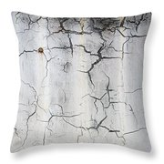 Crackle 1 Throw Pillow