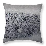 Crackles Throw Pillow