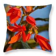 Crackling Fire Begonia Throw Pillow