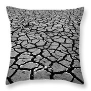 Cracks For Miles Black And White Throw Pillow