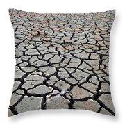 Cracks For Miles Throw Pillow