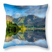 Craf Nant Lake Throw Pillow by Adrian Evans