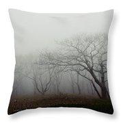 Craggy Gardens Mist Throw Pillow