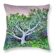 Craggy Gardens North Carolina Blue Ridge Parkway Autumn Nc Sceni Throw Pillow