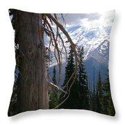 Craggy Mountain Tree Throw Pillow by Christine Burdine