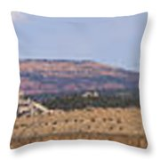 Craig Colorado Panorama Throw Pillow