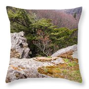 Craigs Of The Mountain Throw Pillow