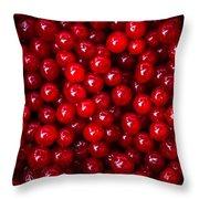 Cranberries - 1 Throw Pillow