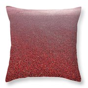 Cranberries Throw Pillow by Olivier Le Queinec