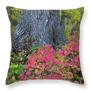 Cranberry Bush And Cottonwood Tree Throw Pillow