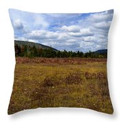 Cranberry Glades Panoramic Throw Pillow