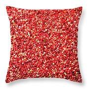 Cranberry Harvest 3 Throw Pillow