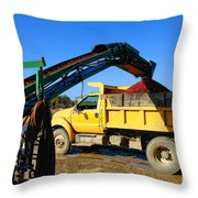 Cranberry Harvest Throw Pillow by Olivier Le Queinec