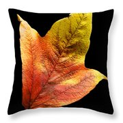 Cranberry Tree Leaf Isolated On White Throw Pillow