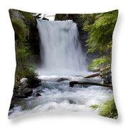 Crandel Creek Falls Throw Pillow