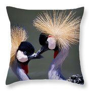 Crane 14 Throw Pillow