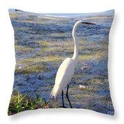 Crane At Pond Throw Pillow
