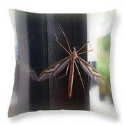 Crane Fly Throw Pillow