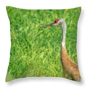 Crane Profile Throw Pillow