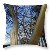 Crape Myrtle Throw Pillow