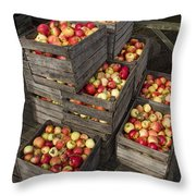 Crated Apples Throw Pillow
