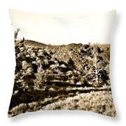 Craters Of The Moon1 Throw Pillow