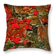 Crawling The Walls Throw Pillow
