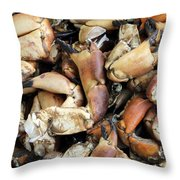 Crayfish Throw Pillow