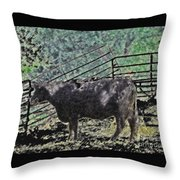 Crazy Cow Throw Pillow