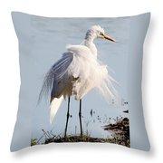 Crazy Egret Feathers Throw Pillow