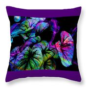 Crazy Elephant Ears Throw Pillow
