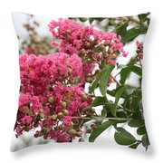 Crazy For Crepe Myrtles Throw Pillow