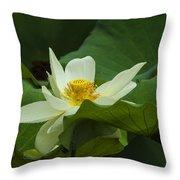 Cream Colored Lotus Throw Pillow