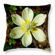 Cream Cup In Park Sierra-ca Throw Pillow
