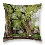 Creating A Yard Throw Pillow