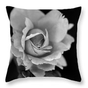Creatively Colorless Throw Pillow