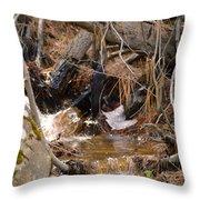 Creek 2 Throw Pillow