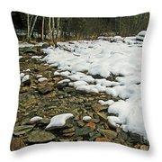 Creek Bed Throw Pillow