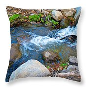 Creek Entering Andreas Canyon In Indian Canyons-ca Throw Pillow
