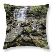 Creek Falls Throw Pillow