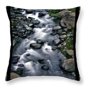 Creek Flow Polyptych Throw Pillow