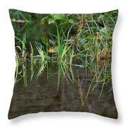 Creek Grass Throw Pillow