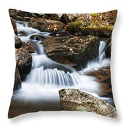 Creek In Maine Img 6377 Throw Pillow