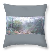 Creek In The Forest Throw Pillow