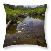 Creek In Vermont Throw Pillow