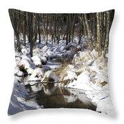 Creek In Winter Throw Pillow