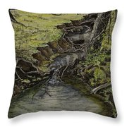 Creek  Throw Pillow by Janet Felts