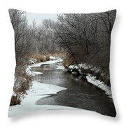 Creek Mood Throw Pillow